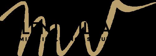 Talent Village New Logo